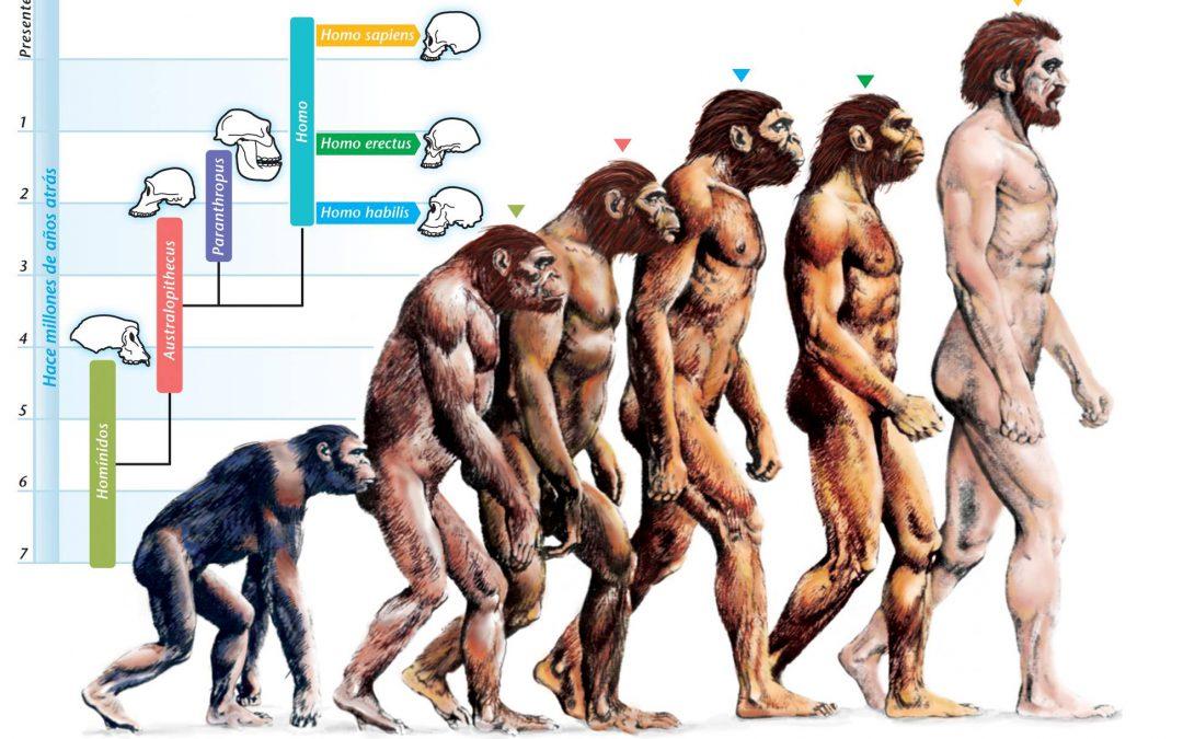 La Evolución como un hecho